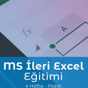 Nette Kariyer Microsoft İleri Excel Eğitimi